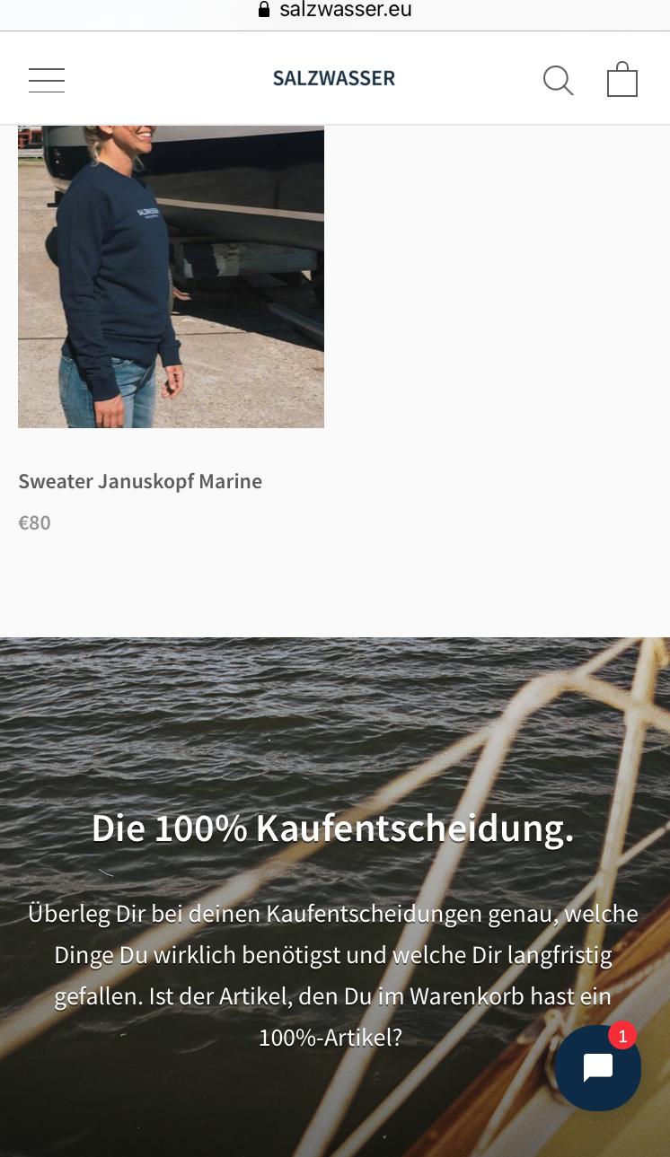 """Ein Screenshot der Website von Salzwasser. In ihrem Online-Shop hat die Marke einen Banner eingefügt mit der Überschrift """"Die 100% Kaufentscheidung"""". Damit macht Salzwasser auf den bewussten und nachhaltigen Konsum aufmerksam."""